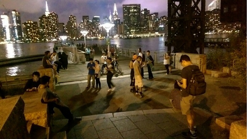 Catching water types on the Long Island City waterfront.